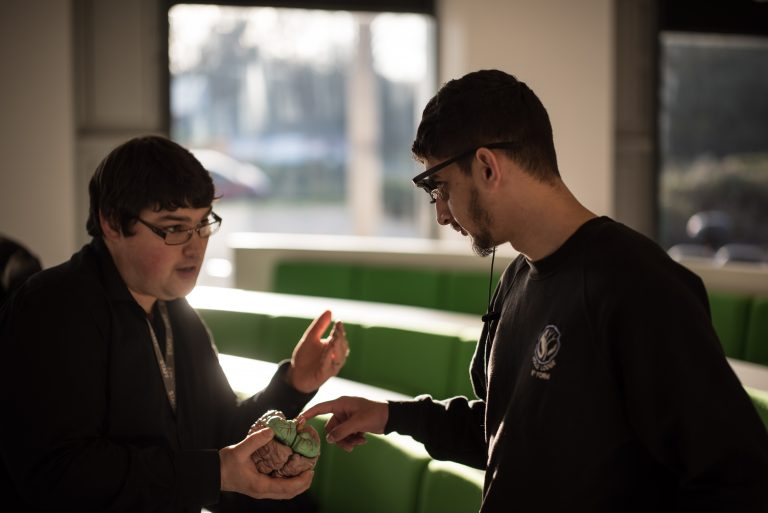 psychology student pointing to a model brain held by lecturer